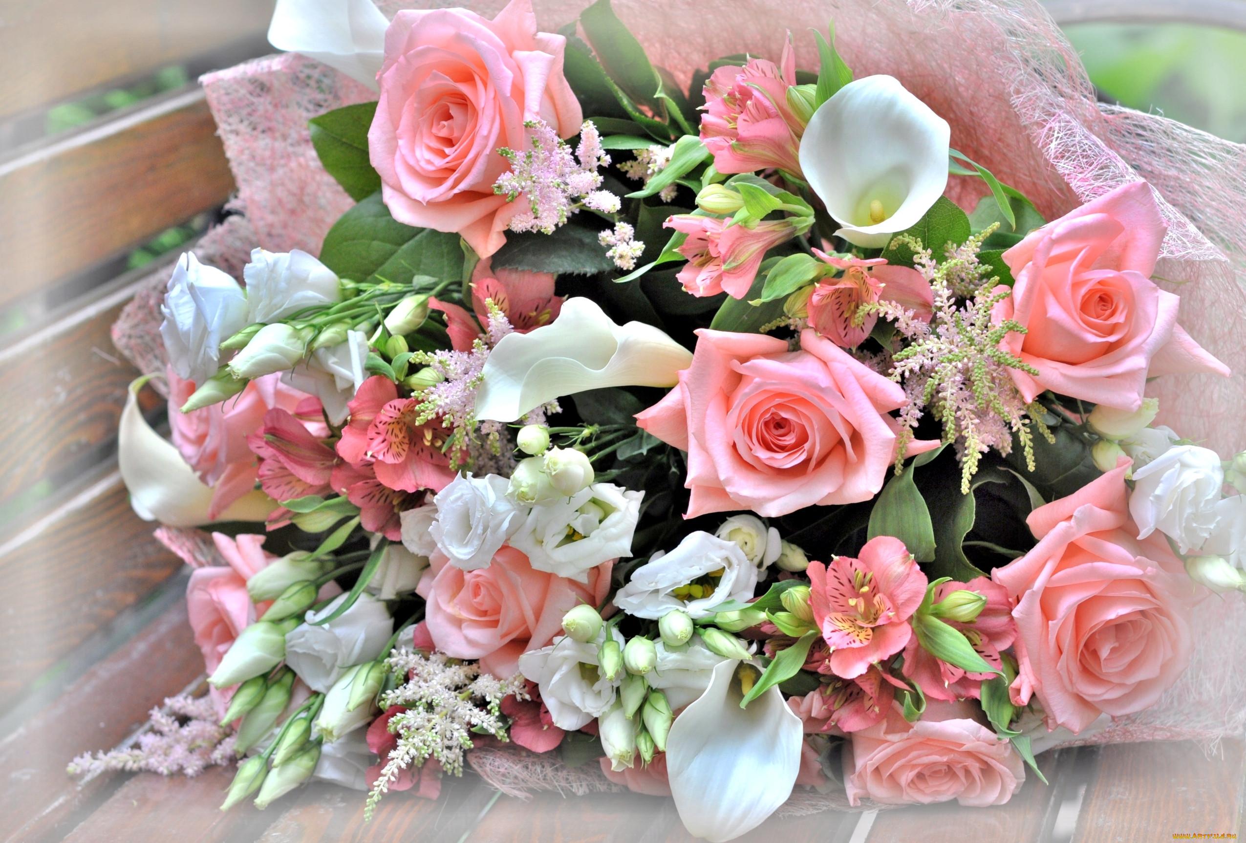 Самые красивые открытки живые цветы